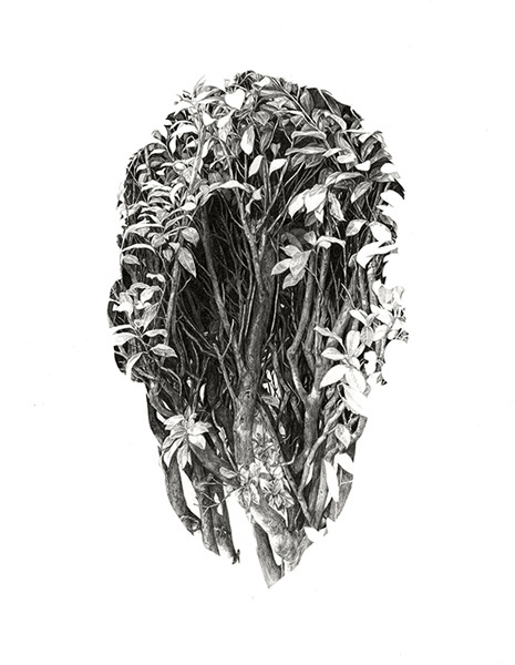 Rupert Smissen #white #plants #sparse #black #illustration #and #foliage #face #drawing #leaves