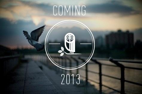 Owl Owl Owl #white #owl #icon #type #logo