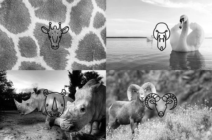 Animal Line Icon Set – PSD Freebies #icon #psd #free #set #annimals