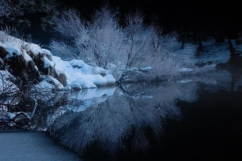 Nature Landscapes by Tyler Westcott | Professional Photography Blog #inspiration #nature #photography #landscape
