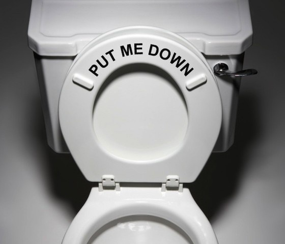 Put Me Down Decal Bathroom Toilet Seat #quote #type #gadget