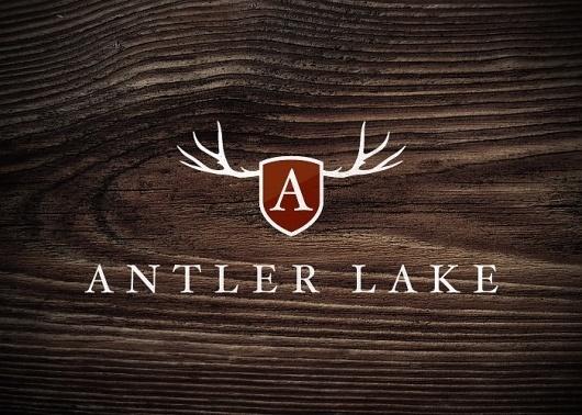Branding 10,000 Lakes #logo
