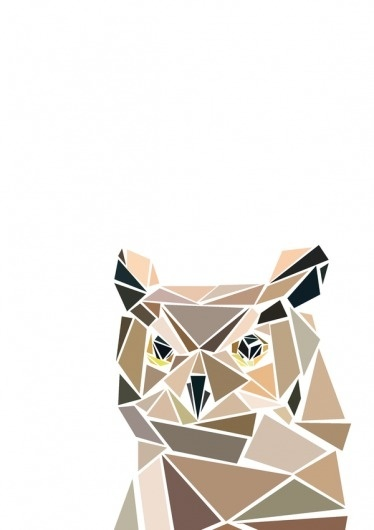 animal heads on the Behance Network #cut #owl #graphic #illustration #poster