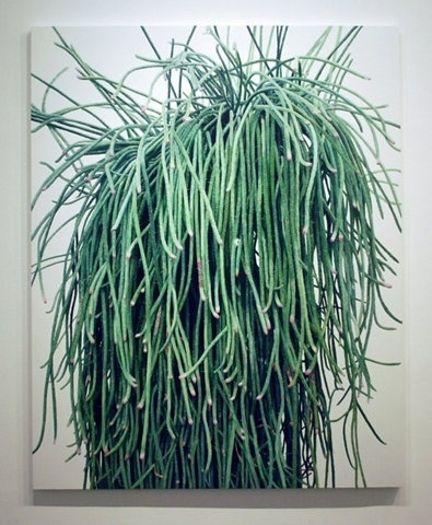 FFFFOUND! | GraphicHug™ - Everybody Needs a Hug #plant