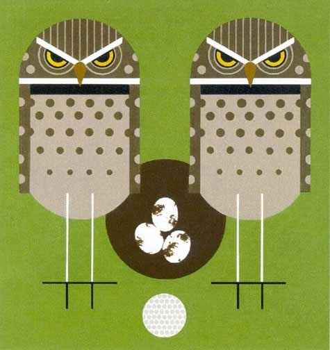 http://b-u-i-l-d.tumblr.com/# #eggs #anger #owls #golfball