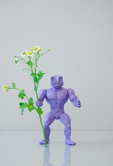 POWER FLOWER : OPEN STUDIO #flower #photography