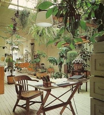 FFFFOUND! | aesthetically pleasing #plants