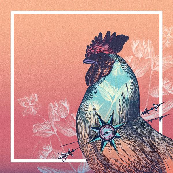 Galinho on Behance #rooster #bird #cock #vintage #gradient #poster #collage