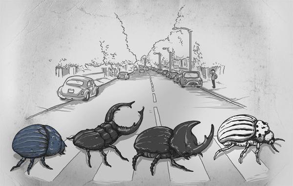 The Beetles - Alex Solis #alex #funny #beetles #solis
