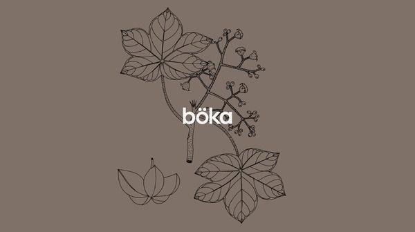 Böka by Arnaud Mercier #trademark #logo #simple #foliage #type