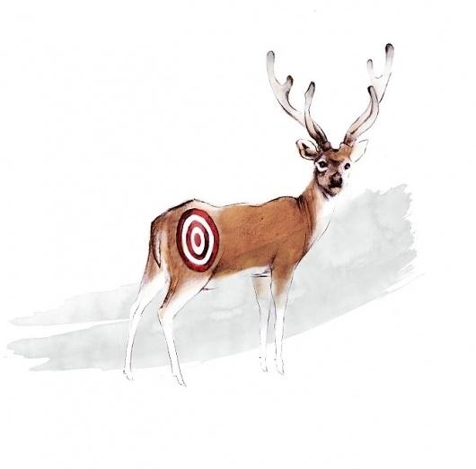 Katie So Illustration & Design Portfolio #so #illustration #deer #katie