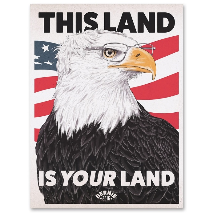This Land is Your Land #BernieSanders #FeelTheBern #BaldEagle #America #USA #2016 #election #campaign