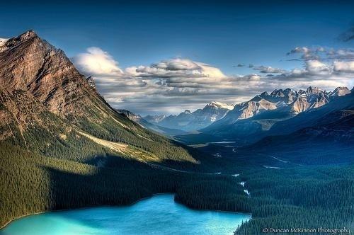 Nature Photography by Duncan McKinnon | Professional Photography Blog #inspiration #nature #photography #landscape