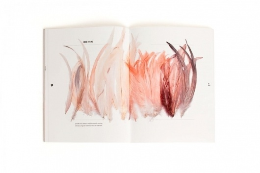 Collate #book #feather