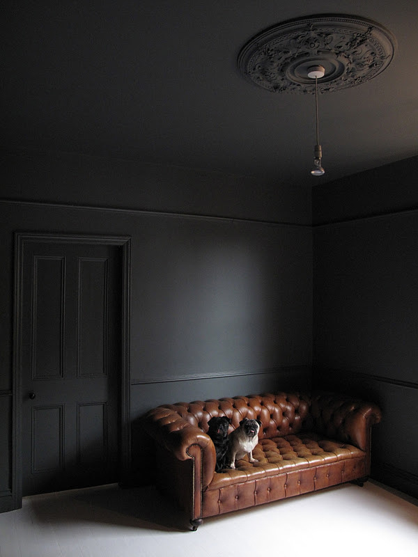 B L O O D A N D C H A M P A G N E #sofa #pug #black #chesterfield #room #dog