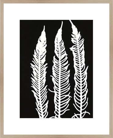 Framed Print 'Black Fern ' 80cm x 60cm