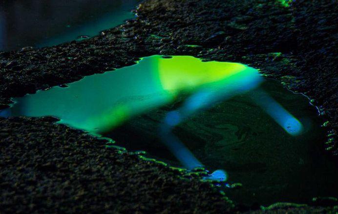 Wet Neon: Magical Reflections In Street Puddles by Slava Semeniuta