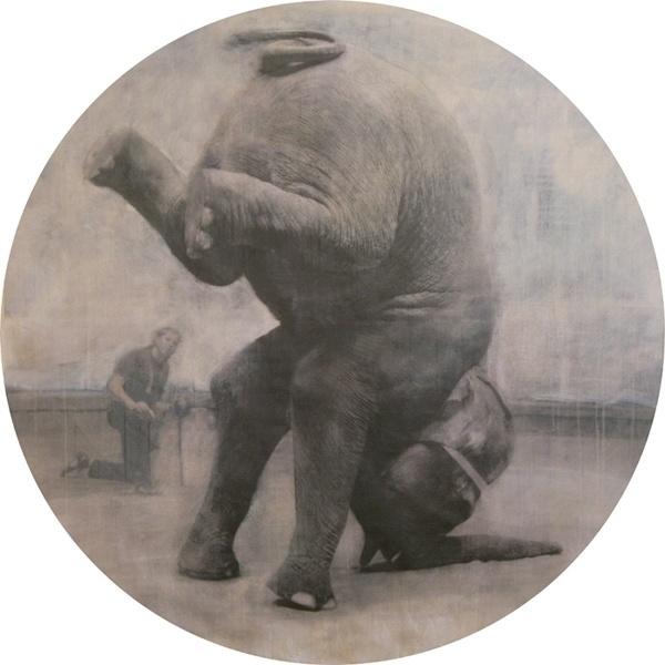 3855823_large.jpg (изображение «JPEG», 600×600 пикселов) #elephant