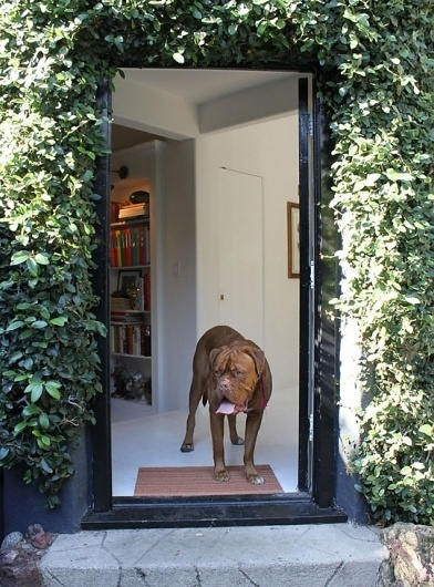 Kathleen & Maurizio's Imported Italian Home House Tour   Apartment Therapy Los Angeles #19th #60s #meets #doorway #italian #century #50s #antique #dog