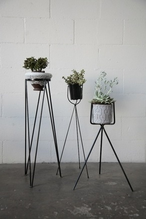 RETRO WIRE PLANT STANDS: Amsterdam Modern ($50-100) - Svpply #steel #planters #modern #planter #succulents #mod #midcentury