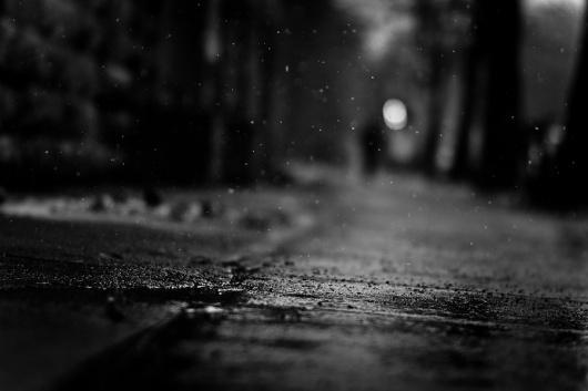 500px / Photo #dof #field #white #depth #photo #of #black #photograph #bokeh #rain #and