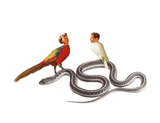 Dan+Bina,+Temptations,+collage,+2010.jpg (JPEG Image, 720x556 pixels) #bina #dan #bird #people #birds #snake #vintage #art #collage