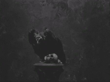 Jonas Eriksson » Every Reason to Panic #death