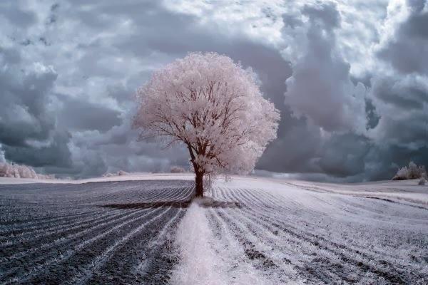 Landscape Photography by Przemysxc5x82aw Kruk #inspiration #photography #landscape