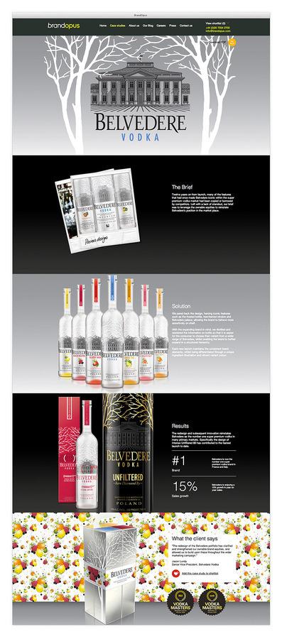 Francesco Vetica | Designer | BrandOpus #portfolio #case #web #studies
