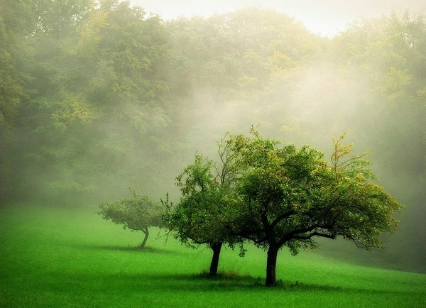 Bernd Rettig #inspiration #photography #nature