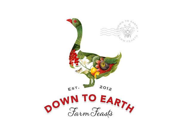 Visual graphc Down to Earth Farm Feasts by Bia van Deventer #logo #texture