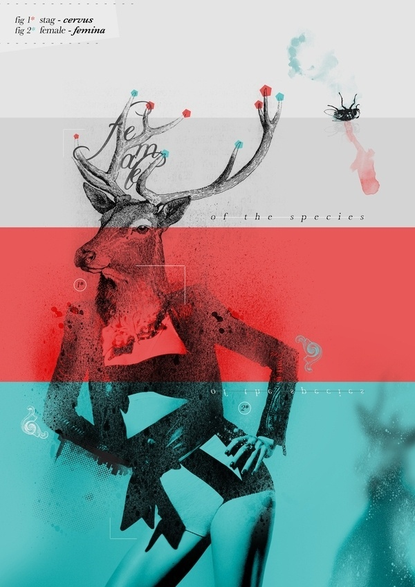 Female Of The Species #abstract #deer #design #art #fashion #graphics #sex #female #beauty