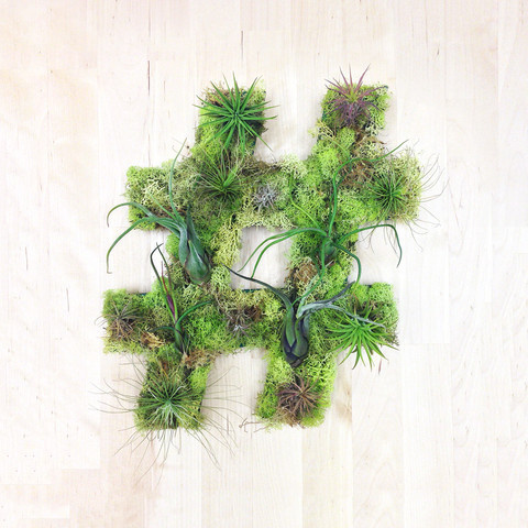 """Hashtag"" Garden #sculpture #airplants #hashtaggarden #gifts #succulents #hashtag #art #artweheart #moss #green"