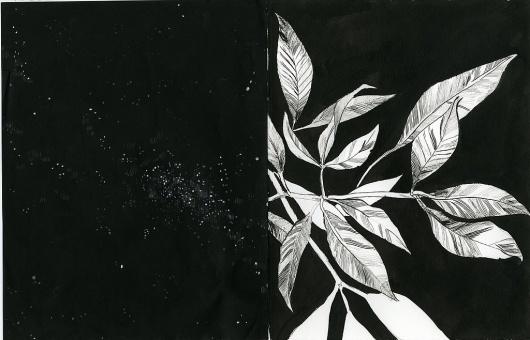 Vita : anthonycudahy.com #cudahy #anthony #art #illustration