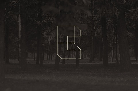 FFFFOUND!   Citadel - Visual Bureau #graphic #trees #blackwhite