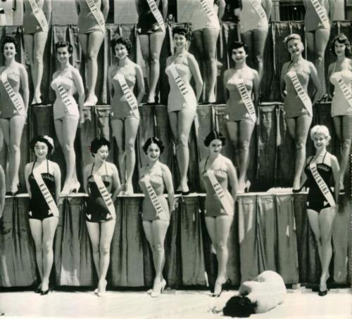 1954 Miss Universe Beauty Pageant Miss New Zealand faints under the hot sun of Long Beach, California. Imgur #photo #heat #fall #women #contest #society #miss #beauty