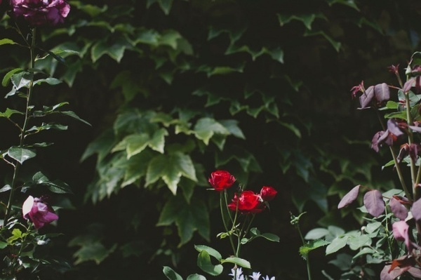 Photography by Julia Robbs #inspiration #photography #travel
