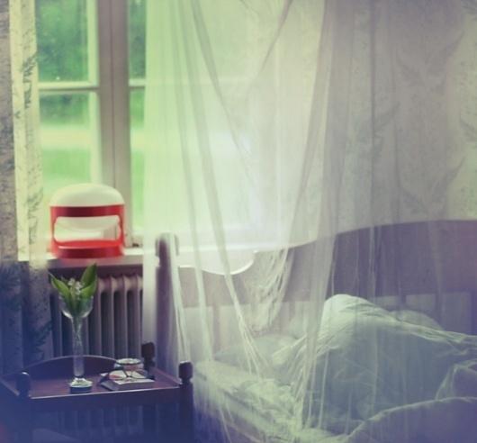 Lily Of The Valley Anna Ådén Photography #adn #anna
