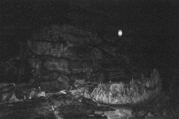 Foragepress.com | Kim Winderman #photography #dark #black