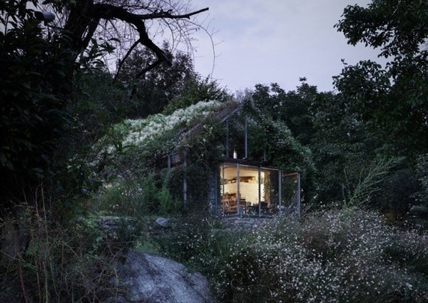 Greenbox House4 #nature #architecture #house #home