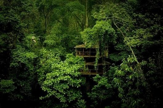 Finca Bellavista Tree Houses, Costa Rica » Design You Trust #wood #photography #house