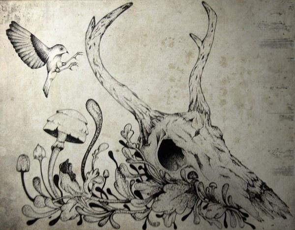 entre o sublime e o trágico #deer #ink #draw #bird #illustration #mushrooms #skull