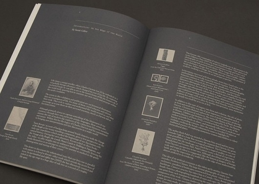Graphic-ExchanGE - a selection of graphic projects #print #layout #book