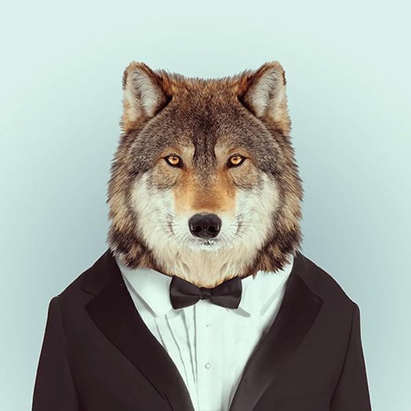 Fashion Zoo Animals – Fubiz™ #totem