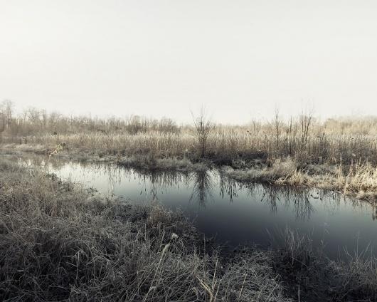 Simon Harsent / Photographer #photo