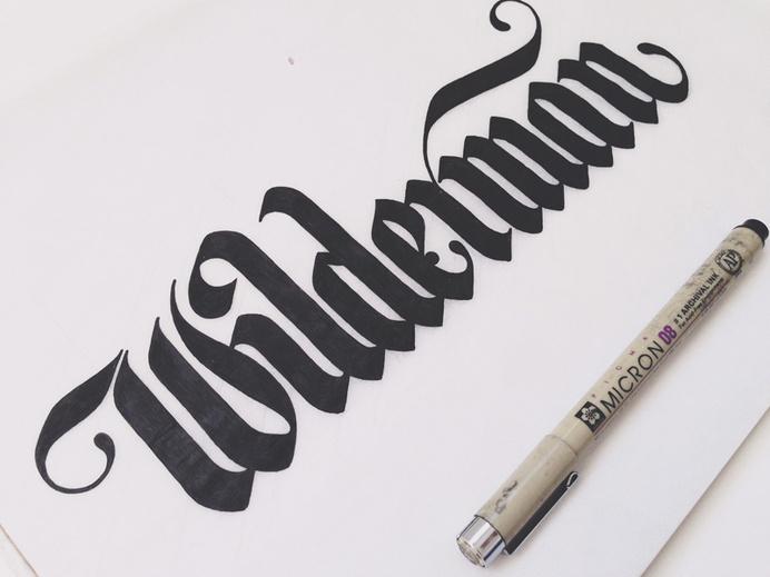 Wilderman Logo by Drew Melton