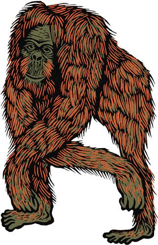 Mark Long #orangutan #wood #cut #lino