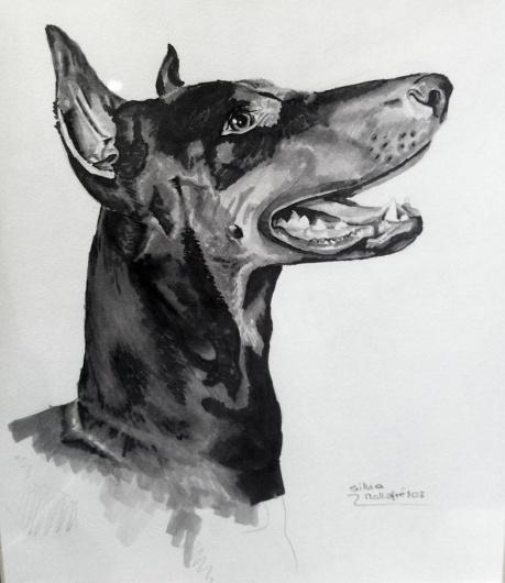 Rotulador anterior 2009 | Silvia Mallofre #mallofre #silvia #doberman #illustration #dog