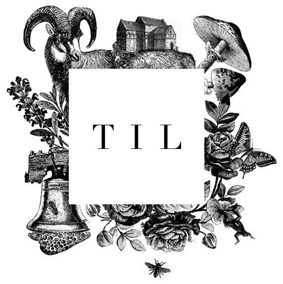 Mark created for TIL (The Illustration League) https://www.facebook.com/theillustrationleague #mark #logo #til #the illustration league #etc