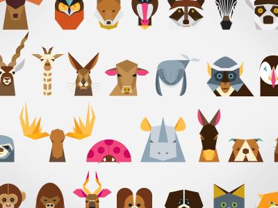 Animals #minimalist #illustration #wildlife #animals